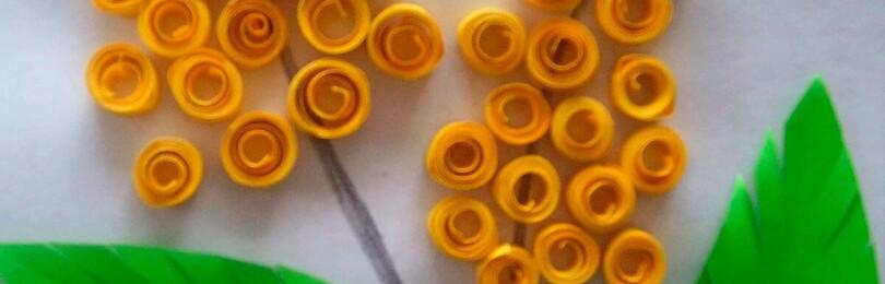 Цветы мимозы из бумаги: делаем по инструкциям с фото и видео