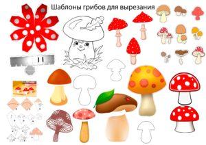 Шаблоны гриба
