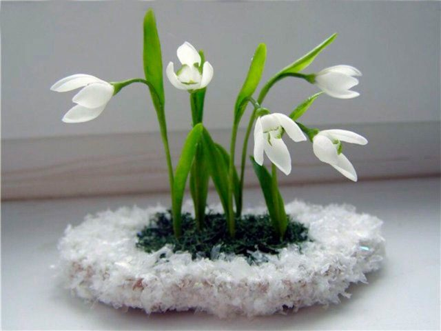 Цветочки подснежника