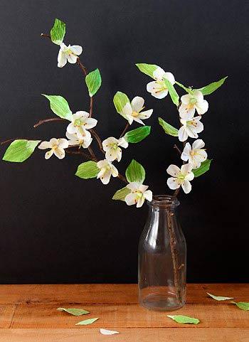 веточка яблони с цветами