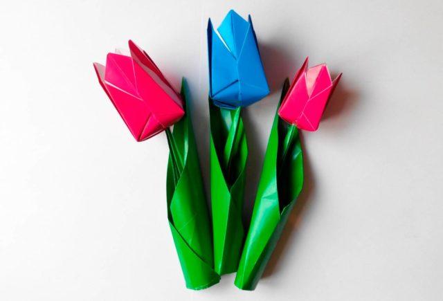 Тюльпаны для открытки