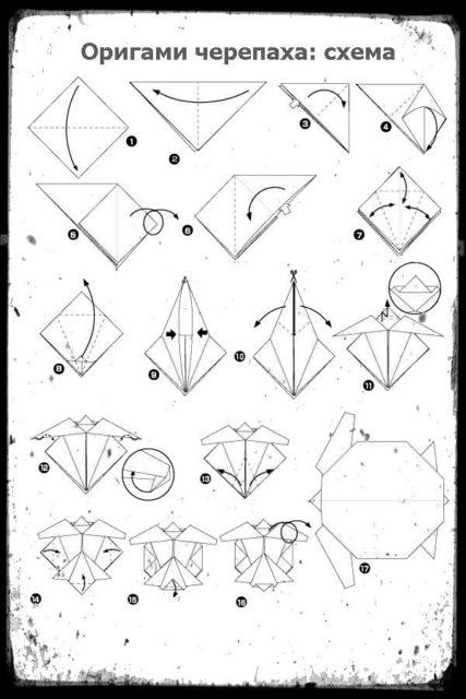 Схема черепашки в технике оригами
