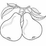 Шаблон груши, фрукты для раскраски
