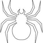 Шаблон паука