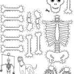 Шаблон скелета