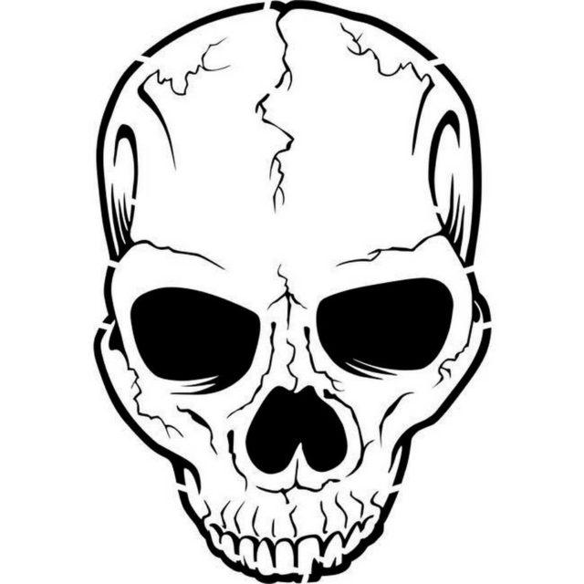 Шаблон черепа