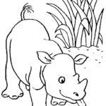 Шаблон носорога