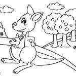 Шаблон кенгуру