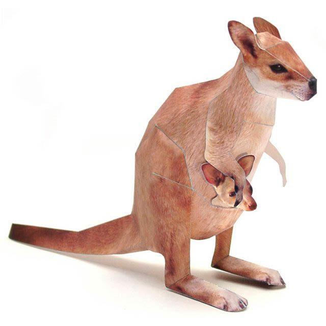 Объемные кенгуру