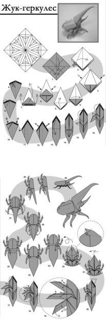Жук геркулес оригами, схема