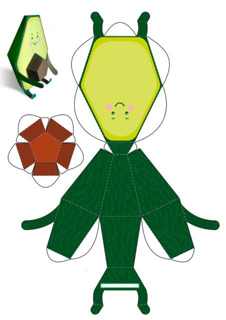 Развёртка авокадо