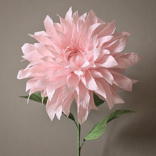 Цветок георгина из бумаги