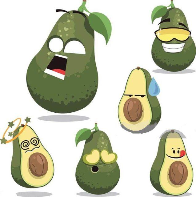Шаблон авокадо