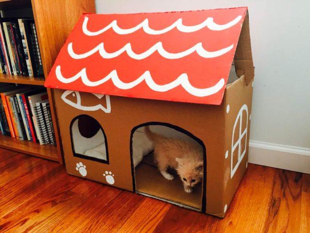 Домик для котенка из коробки