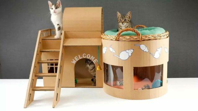 Дом для кошек из больших коробок