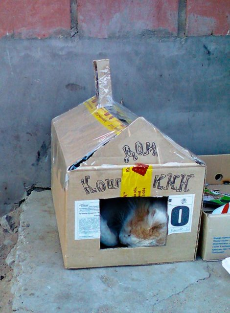 Простой дом из коробки