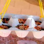 Яичные лотки в виде кормушки для птиц