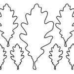 шаблон дубового листа