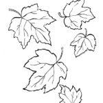 Шаблон листьев